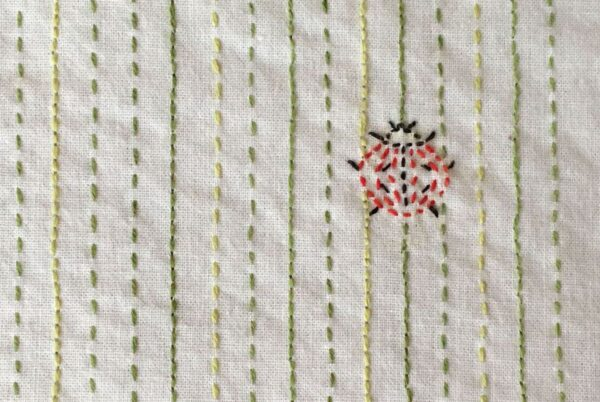 Closeup Image of Embroidered Ladybug